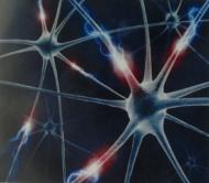 Транслингвальная нейростимуляция в лечении детского церебрального паралича